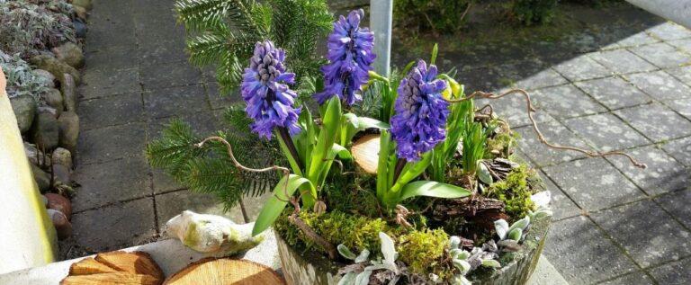 Forår på Agerland